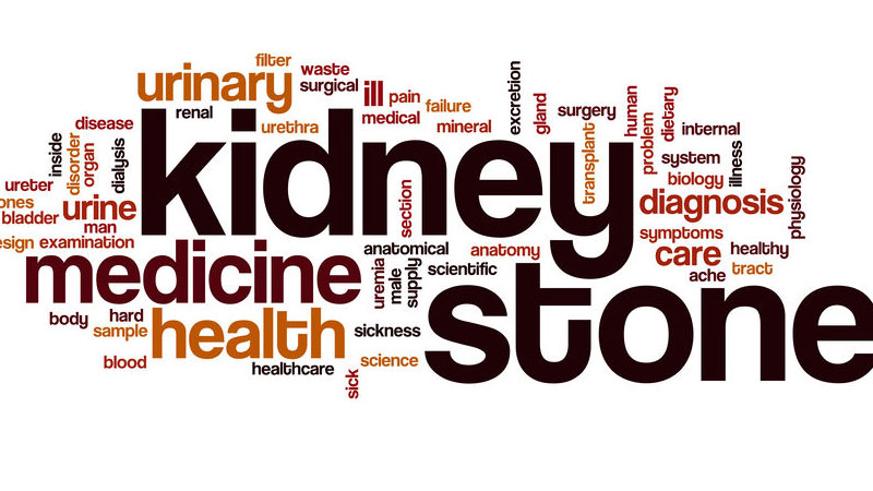 What You Don T Know About Kidney Stones Can Hurt You Shore Physicians Group
